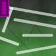 earth-life-simulator
