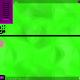 snail-race-simulator