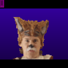 Click to play WHAT DOES THE FOX SAY GRAPHIC