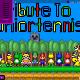 tribute-to-juniortennis7