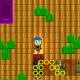 treetops-beta